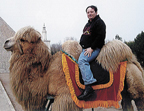 china_camel.jpg