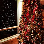 More Christmas tree nightmares