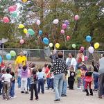 HeadStart celebrates 50 years