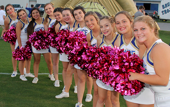 bruce cheer pink68