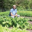Mart Mounger's garden is meticulously organized