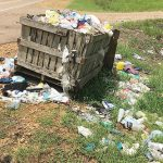 Loose garbage is a problem, but carts  are an expensive option for the county