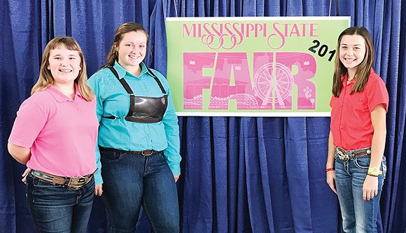 County Youth at State Swine Show