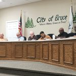 Bruce board gets go ahead to clean properties with current ordinance