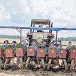 Field days of summer - Students find work in sweet potato fields